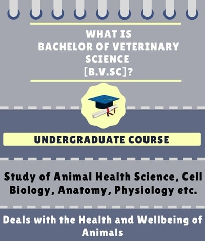 What is Bachelor of Veterinary Science [B.V.Sc]?