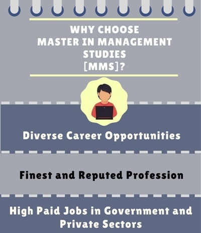 Why choose Master in Management Studies [MMS]?