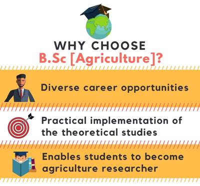 Why choose B.Sc in Agriculture