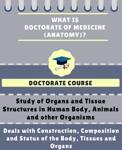 What is Doctorate of Medicine [MD] (Anatomy)?