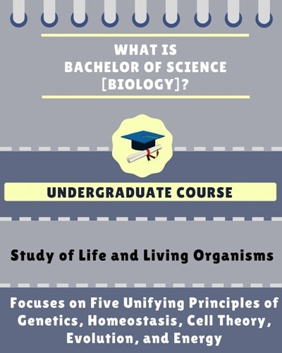 What is Bachelor of Science [B.Sc] (Biology)?