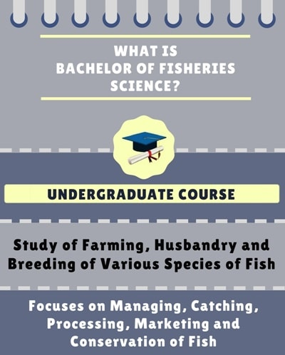 What is Bachelor of Fisheries Science [B.F.Sc]?