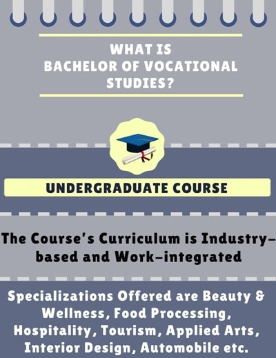 What is Bachelor of Vocational Studies [B.Voc]?