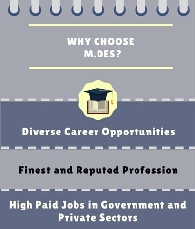 Why choose Master of Design [M.Des]?